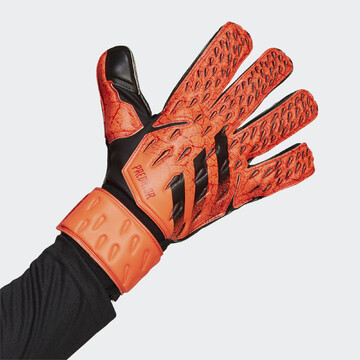 GR1536 - Brankářské rukavice Predator